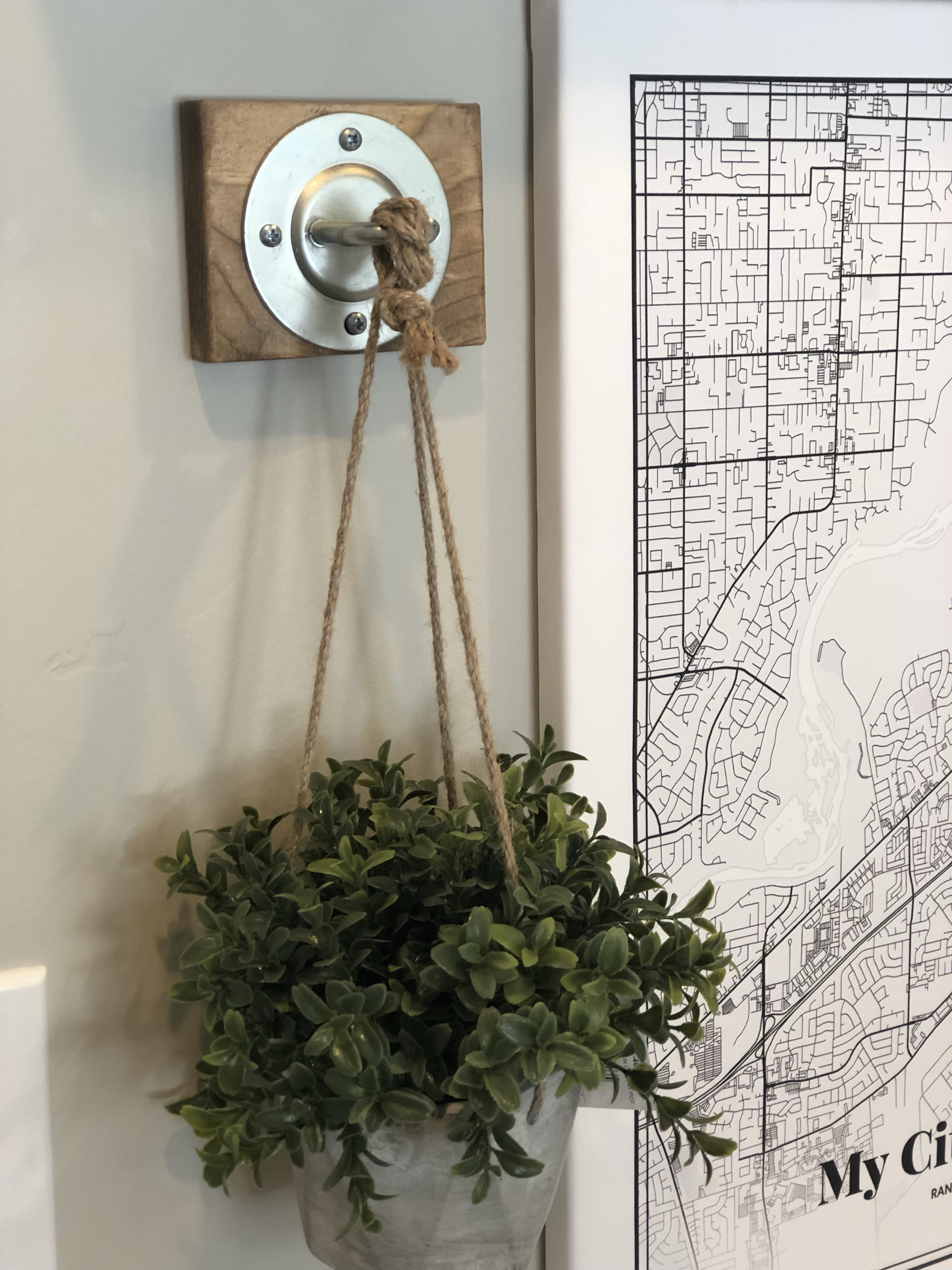 Plant Wall Hook