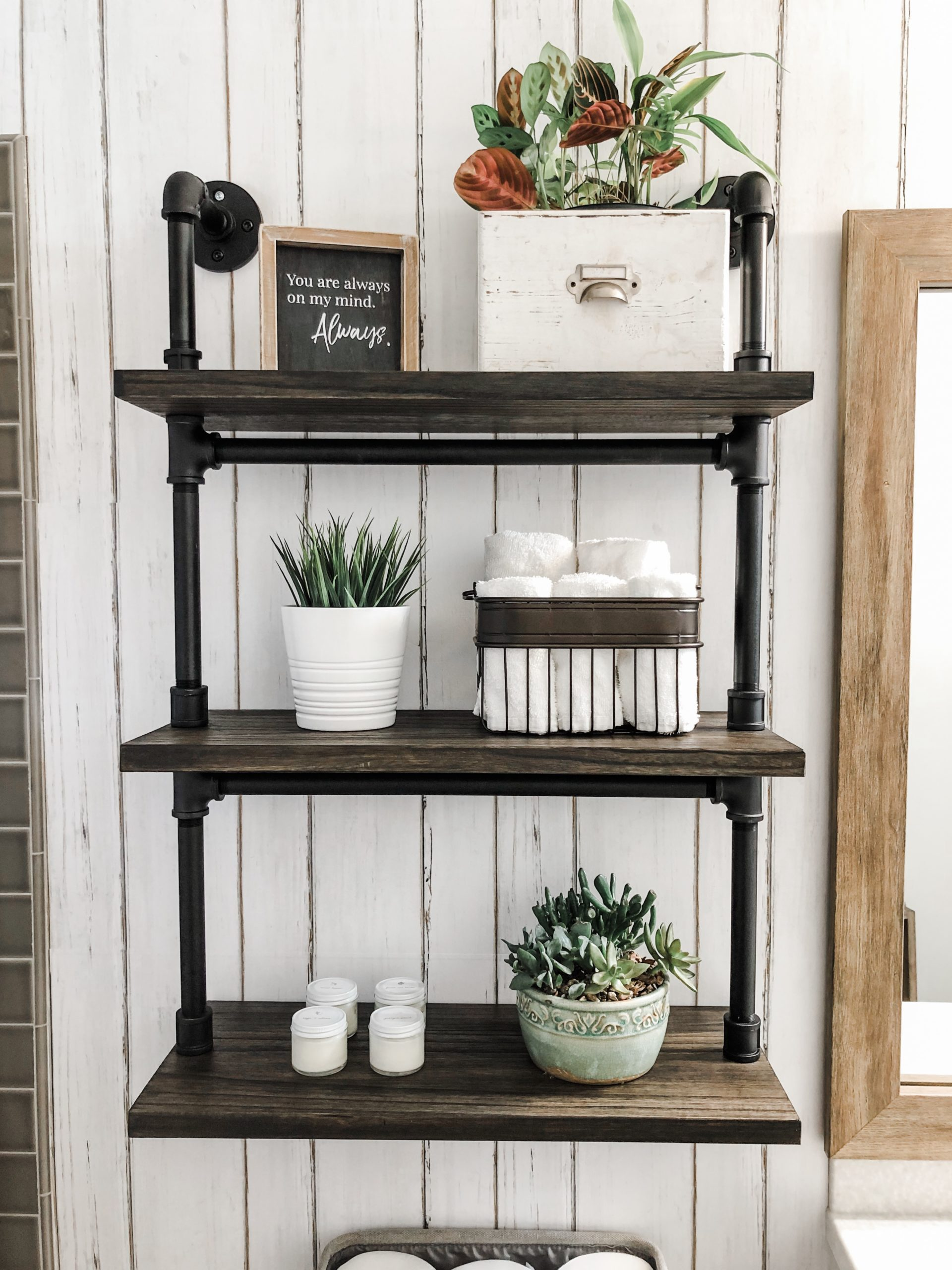 Plumpers Pipe Shelf